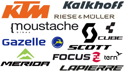 Electric Bikes Brands