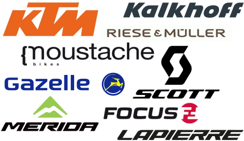 Electric Bike Brands