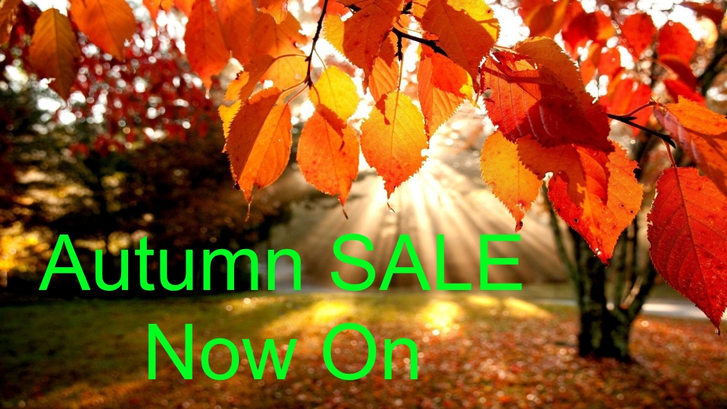 Autumn Sale 2017