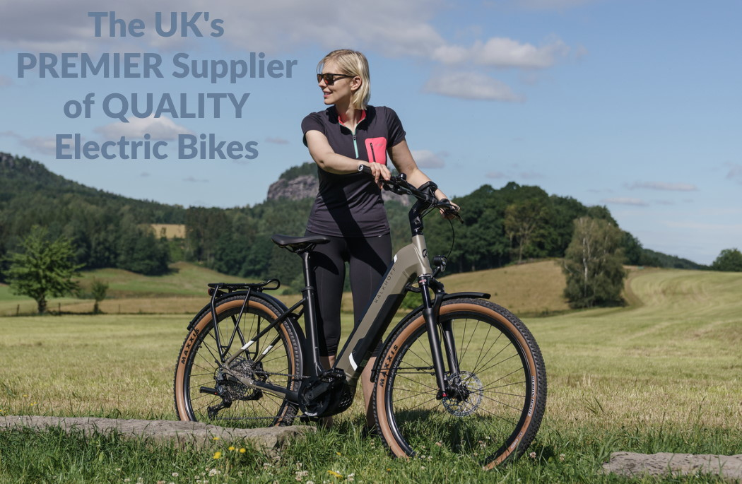 Electric Bikes March 2021